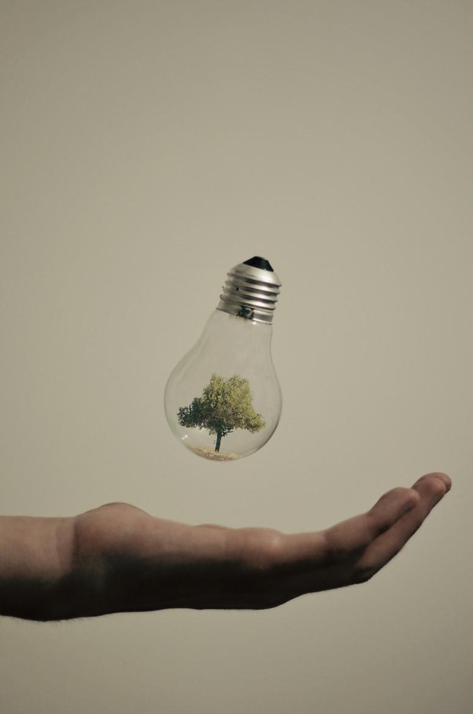 Lâmpadas Criativa