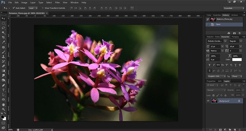 Aprenda a reduzir o ruído de suas imagens no Photoshop
