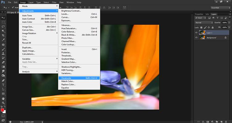 Melhorando a nitidez da sua imagem no Photoshop - High Pass