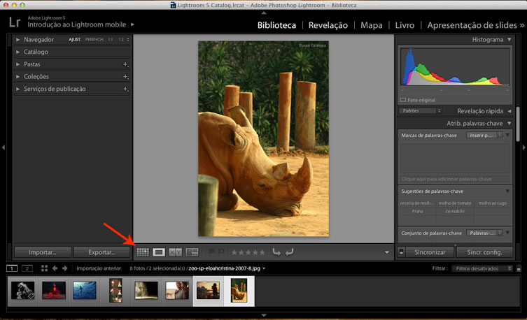 Tutorial Lightroom