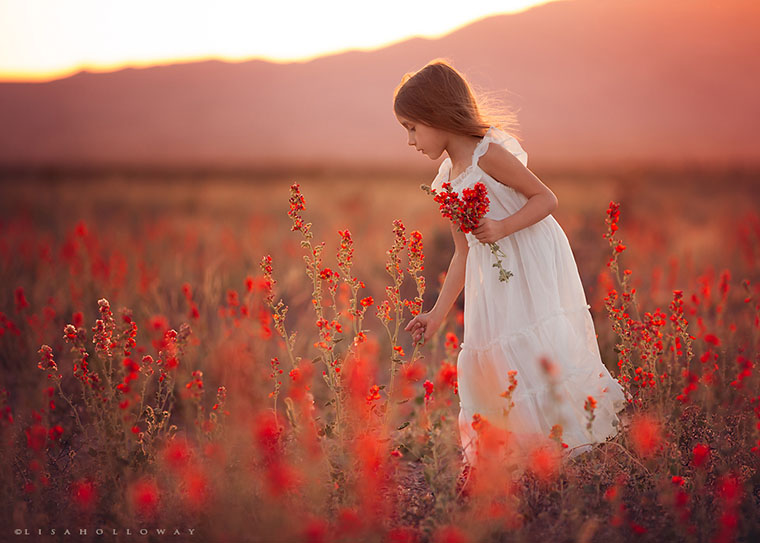 Lisa Holloway